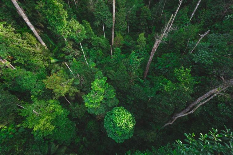Climate Pledge Fund