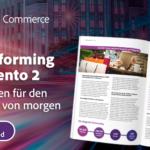 Re-Platforming zu Magento 2