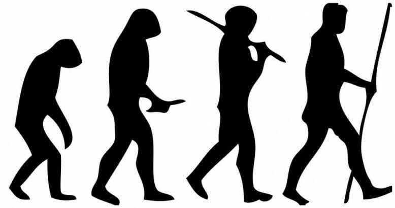 human_evolution_scheme_2
