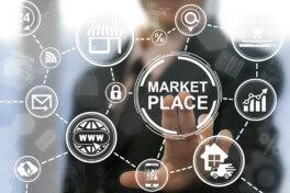 Schuh24 Plattformökonomie