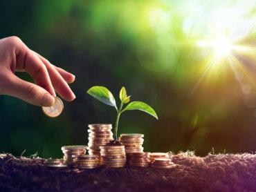 Nachhaltiges Supply Chain Management ist bei Unternehmen angekommen