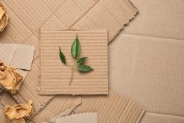 Nachhaltige Versandverpackung
