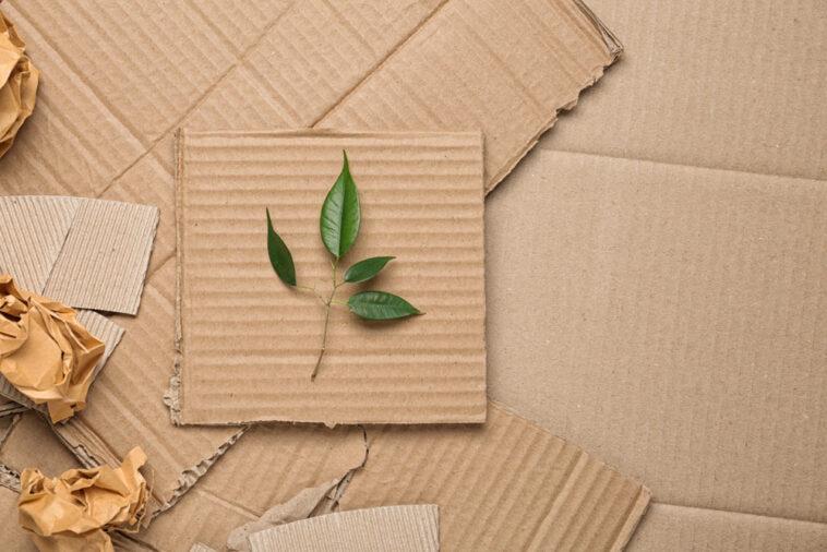 Ökologische Verpackung dank Bio-Luftpolsterfolien