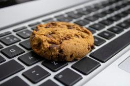 Third-Party-Cookies Marketing im E-Commerce: Wie Händler das Ende der Third-Party-Cookies nutzen können