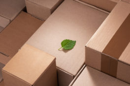 Nachhaltigkeit im E-Commerce