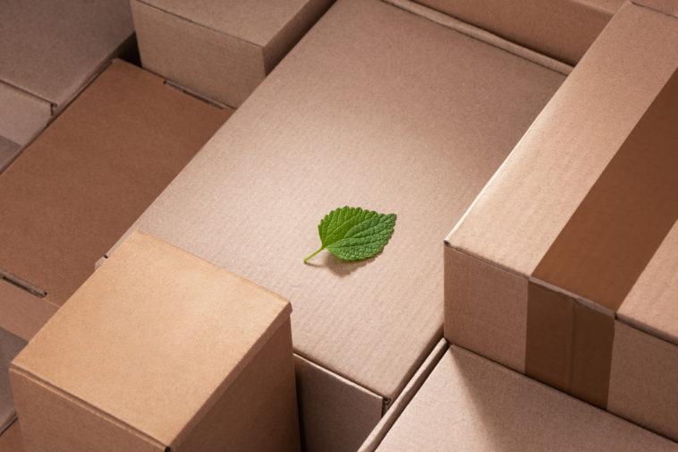 CO2-Emissionen Nachhaltigkeit im E-Commerce