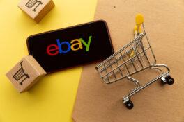Marktplatz vs. Onlineshop: Wie können Händler von Ebay profitieren?