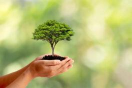 Nachhaltiges Shoppen für Endverbraucher: Neue Plattform mit 550 Marken