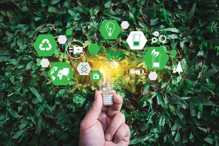 Nachhaltiger Einkauf