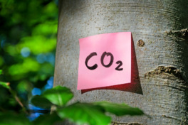 Klimaneutral einkaufen