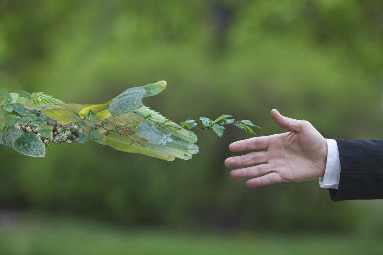 Nachhaltiges Wirtschaften