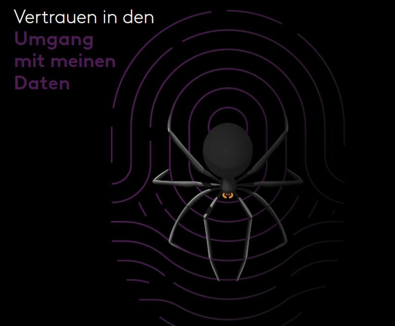Grafik Spinne