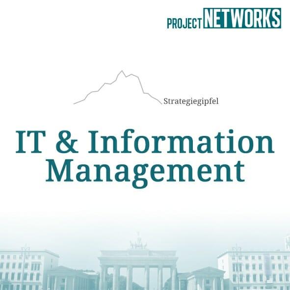 logo_it_management